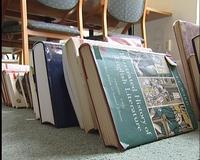 Pillanatfelvétel a vízkárt ért könyvekről